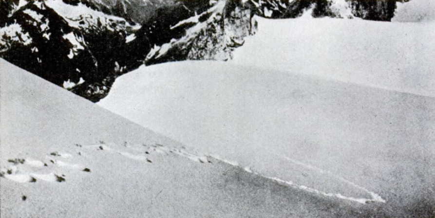 Frank S. Smythe's photograph of alleged Yeti footprints taken in 1937