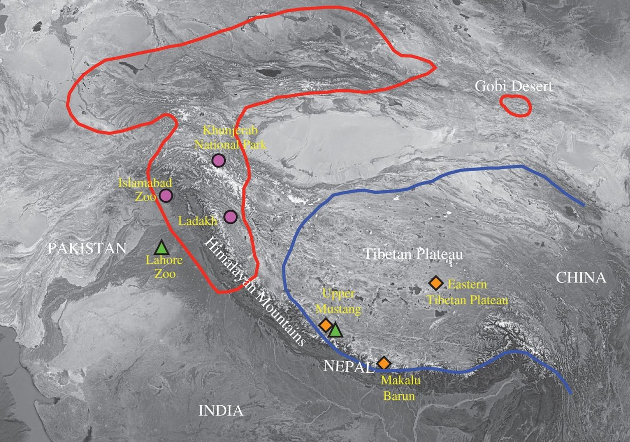 Map showing bear populations where yeti samples were taken
