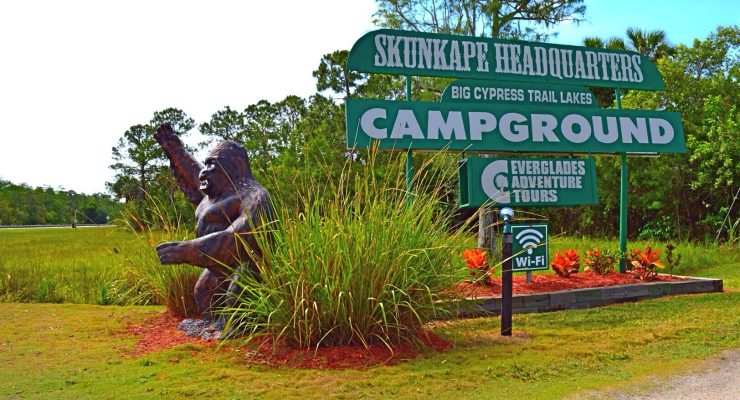 The skunk ape is a big tourist draw