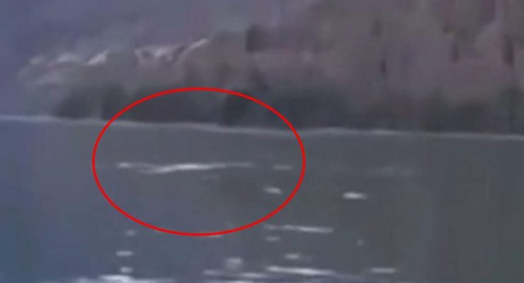 Video of 'Chinese Nessie' is going viral