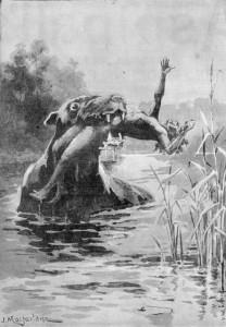 Bunyip 1890 drawing